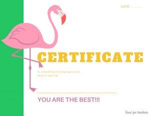 Certificate ofParticipation (1)